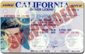 Suspended License